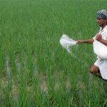 ખેડૂતોને જરૂર પુરતુંજ ફર્ટીલાઈઝર મળે તેની ખાસ વ્યવસ્થા કરશે GSFC