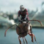 5 કારણો – શા માટે તમારે Ant-Man And The Wasp જોવી જોઈએ!