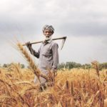 ટેકાના ભાવો વધારીને સરકાર ખેડૂતો ની આવક બમણી કરી શકશે ખરી?