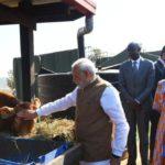વડાપ્રધાન મોદીએ રવાન્ડામાં 200 ગાય દાનમાં આપી એ ગીરીન્કા પ્રોજેક્ટ શું છે?